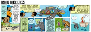 marine-biosciences-strip2C-col